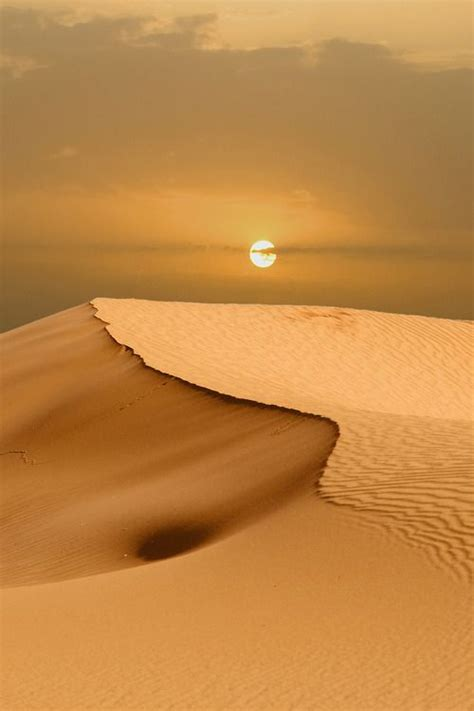 To Do Time In The Desert by 1000 Id 233 Es Sur Le Th 232 Me Aimants Sur Canevas En