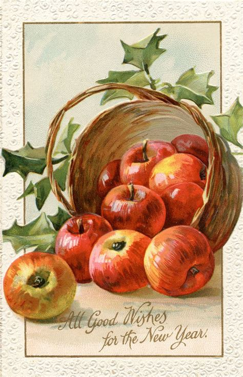 apples and oranges for new year 387 best frutas verduras y hortalizas images on