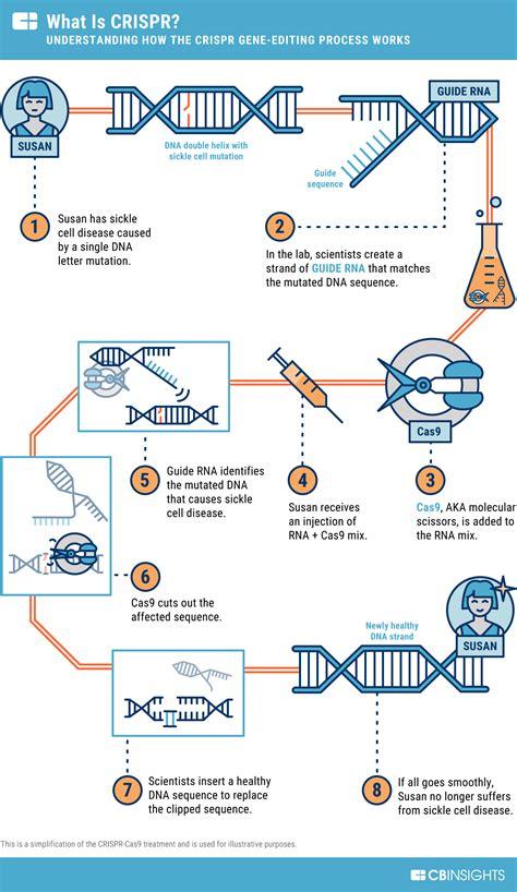 Первый опыт генной терапией с участием Crispr Cas9 отменен