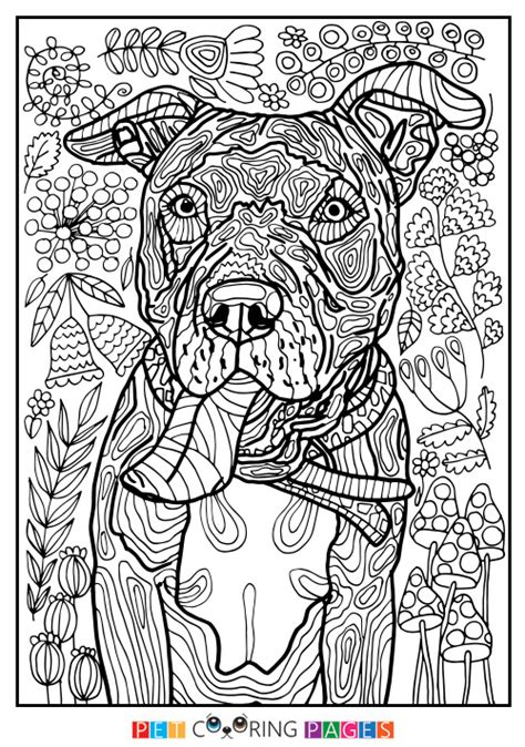 detailed coloring pages of dogs free printable american pit bull terrier coloring page