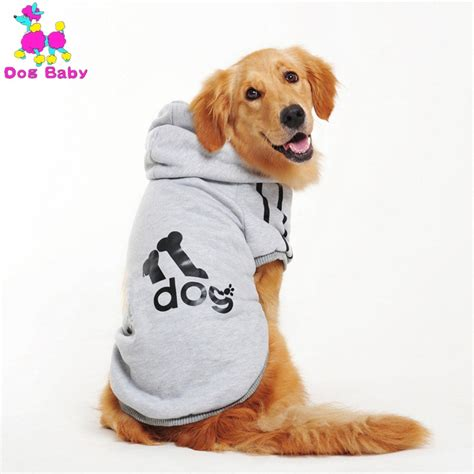 golden retriever coat stages clothes for golden retriever dogs large size winter