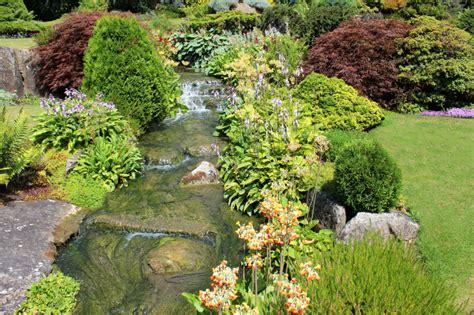 pictures  backyard garden waterfalls ideas designs