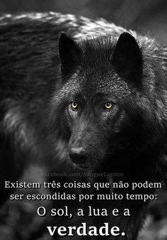 Lobo Mau Com Frases - Fotos e fotos|Seu portal de imagens