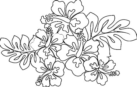 hawaiian coloring pages hawaiian flowers coloring page coloring home