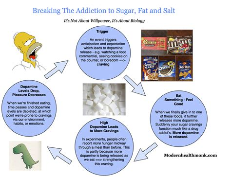 How To Detox From A Salty Meal by Nicotine Addiction Cycle Www Pixshark Images