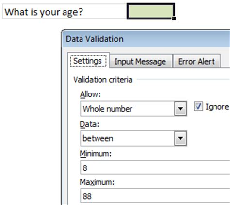 Quickly Remove Data Validation Rules Using Paste Special 187 Chandoo Org Learn Excel Power Bi Data Validation Template