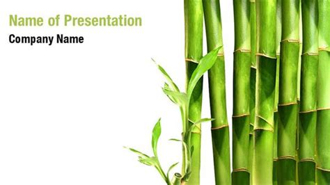 Bamboo Shoots Powerpoint Templates Bamboo Shoots Powerpoint Backgrounds Templates For Bamboo Powerpoint Template