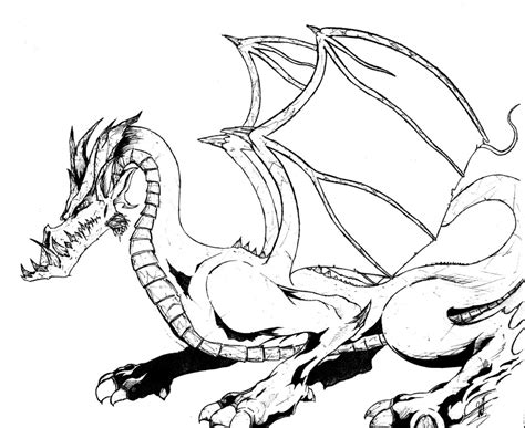 hd realistic dragon coloring pages images free coloring