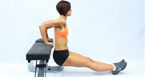 bench sex positions know your exercise bench dips thehealthsite com