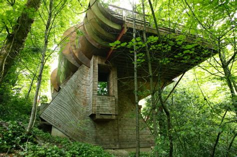 tree house music whimsical wooden tree house brings nature music to life in portland oregon modern