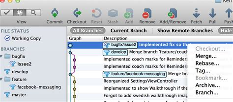 git tutorial with sourcetree git sourcetree app how do i know what is my current