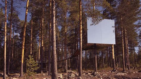 tree hotel sweden mirror cube treehouse reversadermcream