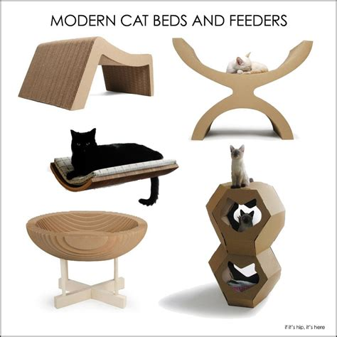 stylish cat furniture fabulous finds for the fancy feline modern beds and bowls