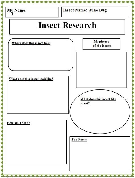 17 best images about classroom book reports on