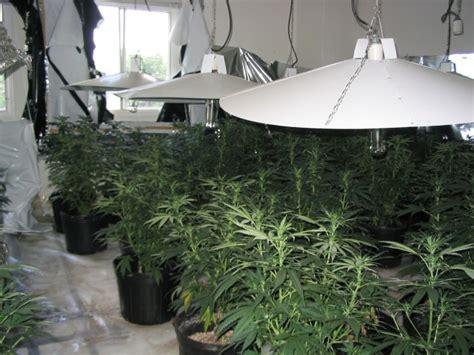 Grow House by Marijuana Grow Houses Mandatory Environmental Assessment