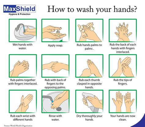 What Is The Right Way To Wash Your Hair by Washing 01 Jpg 1398 215 1221 Gd3 Opdracht 3 Fase
