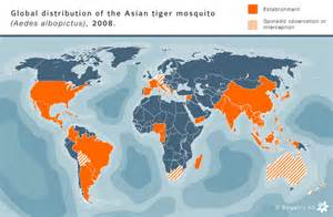 tiger map tiger mosquito world maps and distribution us asia