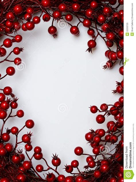 oval christmas frames frame stock image image of oval frames border 22203725