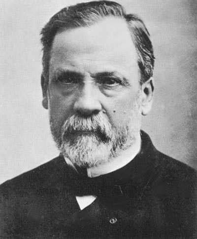 louis pasteur biography in spanish 6 pasteur https 10awesome com