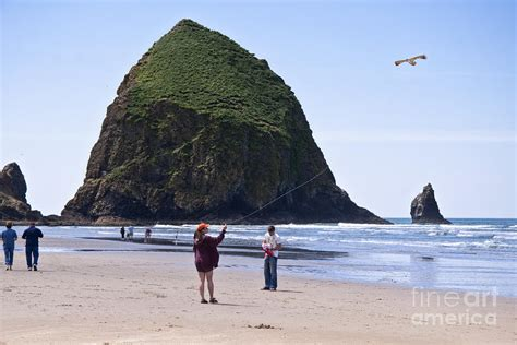 flying a bird kite near haystack rock canon beach oregon