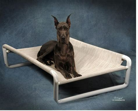great dane dog bed extra large dog beds rover company
