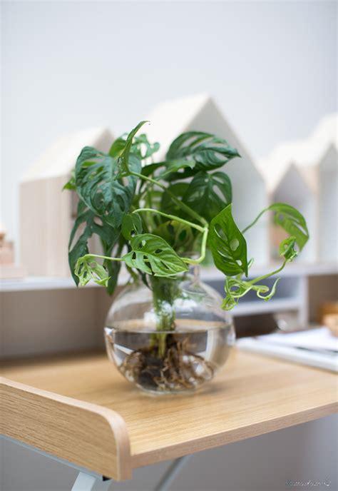 grüne bank fixias gartenbank mit pflanzen dekorieren 210424
