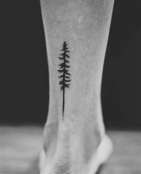 tree tattoo pine tree ankle tattoo stella lu 248 tattoos