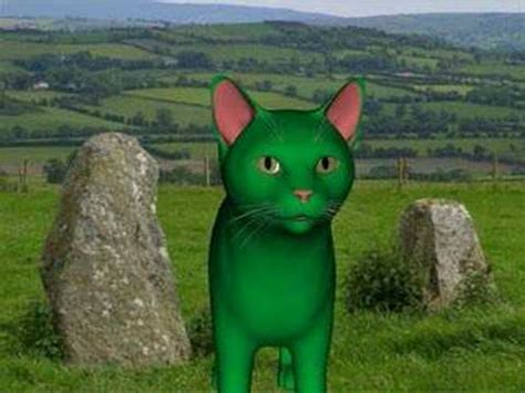 Green Cat green cat wishes