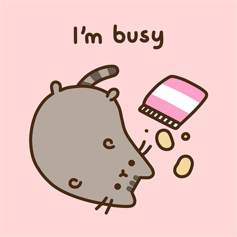 i am sitting happenings that entertained me at school books die besten 25 kawaii pusheen ideen auf