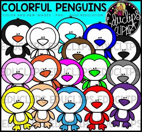 colorful penguins colorful penguins clip bundle color and b w