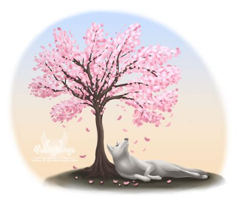 cherry blossom tree tattoo sketch www imgkid com the