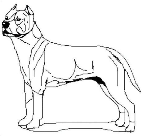 imagenes para dibujar de perros pitbull imagenes de perros para dibujar de pitbull imagui