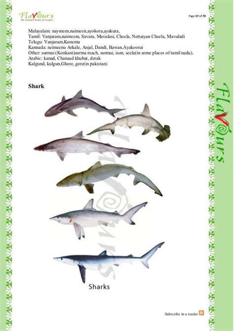 bioskop 78 semi seotoolnet com fish names in tamil and english with pictures seotoolnet com