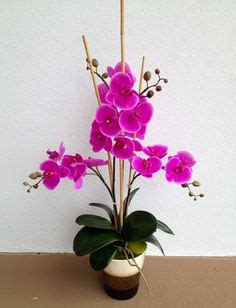 1000 images about arcadia floral home decor showroom on 1000 images about anggrek on pinterest orchid