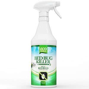non toxic bed bug spray 6 pesticides used in effective bedbug control