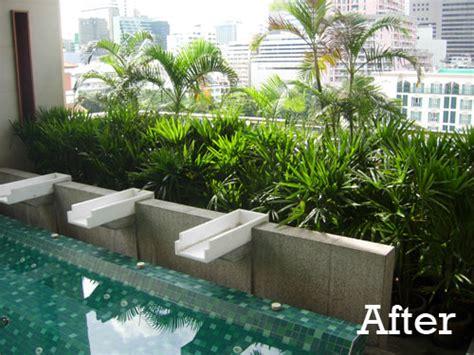 tropical planting in indoor pool garden bangkok thai garden design