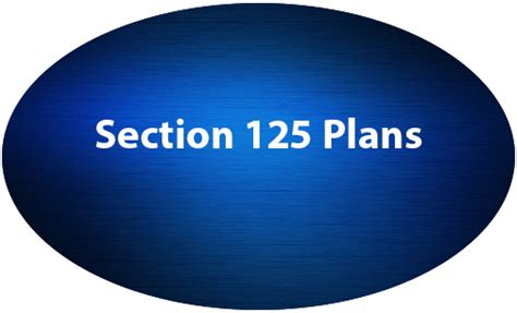 Section 125 Plans by Employee Benefits Solutions The Summit Companies