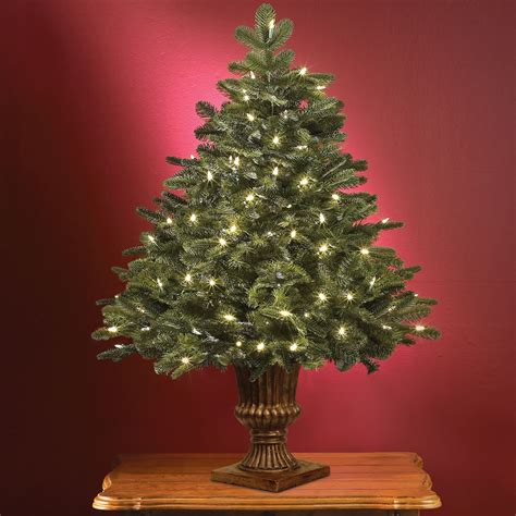 the world s best tabletop prelit noble fir hammacher