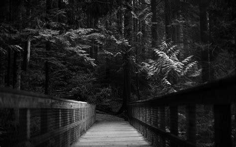 darkness beautiful dark themes fantastic dark wallpaper 2164 2560 x 1600 wallpaperlayer com