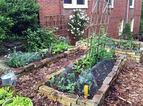 raised bed vegetable gardening natural gardening raised bed vegetable gardening