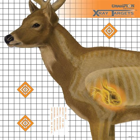 printable deer shooting targets chion 6 pk deer x ray paper targets by chion at