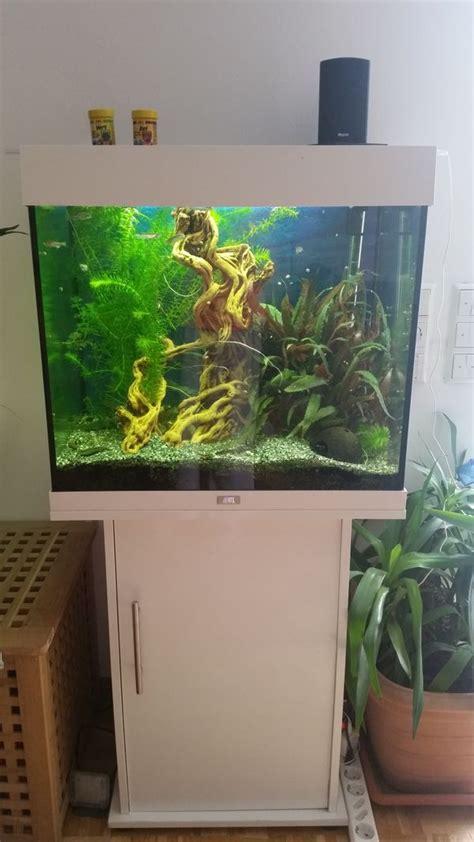 gebrauchtes aquarium kaufen lido aquarium kleinanzeigen kaufen verkaufen bei