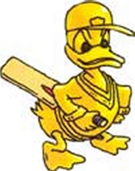 Duck Cricket