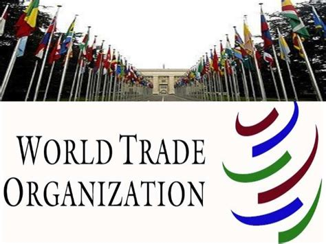 World Trade Organization Research Paper by Essay About World Trade Organization Writingfixya Web