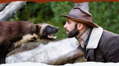 coyote peterson coyote peterson