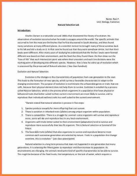 chemistry lab report template chemistry lab report template template business