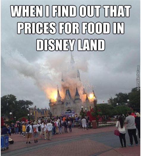 Disneyland Meme - disneyland happiest place in the world if you have money