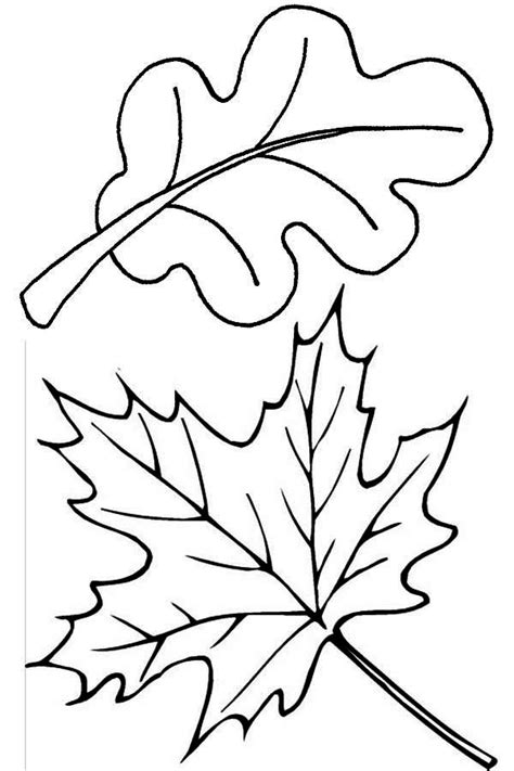 coloring page autumn leaves fall leaves coloring pages bestofcoloring com