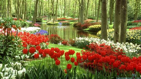 28 Beautiful Gardens Like Dream Mostbeautifulthings Most Beautiful Flower Gardens