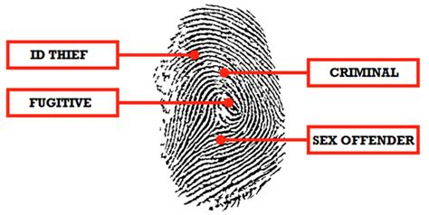 Fingerprints For Criminal Record Check Criminal Records Check Criminal Record Search